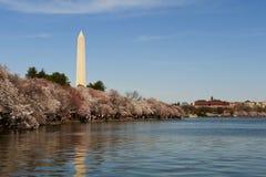 Het Monument van Washington in gelijkstroom. Royalty-vrije Stock Foto's