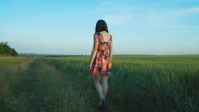 Het mooie, aantrekkelijke Europese meisje met lange benen in korte rok met bloemen loopt op een roggegebied en strijkt langs de r stock video