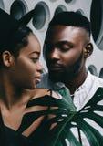 Het mooie Afrikaanse Amerikaanse paar kussen bij de haven royalty-vrije stock fotografie