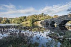 Het mooie beeld van het de Herfstlandschap van Bosherston-Meren in Pembroke Royalty-vrije Stock Foto's