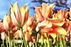 Het mooie bloemen kleurrijke schilderen bij Keukenhof-bloemtuin Royalty-vrije Stock Foto's