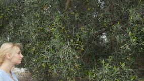 Het mooie blonde komt aan de olijfboom op een landbouwbedrijf stock footage