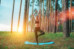 Het mooie de zomermeisje in bos, die zich in een yoga bevinden stelt op deken Houdt saldo, mediteert, spier openlucht uitrekken z royalty-vrije stock foto