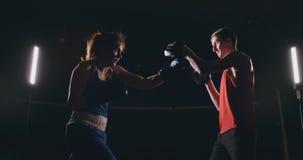 Het mooie donkerbruine bokser uitwerken blaast aan de poten met een trainer in een donkere ruimte stock footage