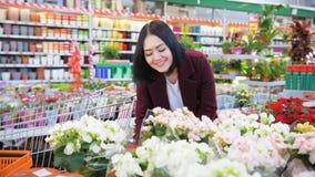 Het mooie donkerbruine jonge vrouw ruiken bloeit zacht in van de de supermarktplaats van de tuinwinkel vrouwelijke de tuinmanhand stock video