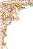 Het mooie frame van juwelen Stock Fotografie