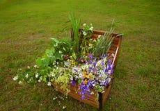Het mooie gekleurde boeket van de zomerbloemen Stock Fotografie