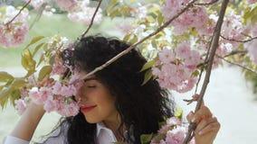 Het mooie het glimlachen brunette geniet sakura van geur stock footage