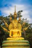 Het mooie gouden standbeeld van Boedha met zeven onder hoofden van Phaya Naga Stock Foto