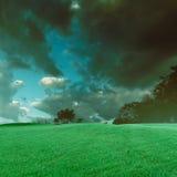 Het mooie gras en de hemel van het landscap donkere gebied Stock Afbeeldingen