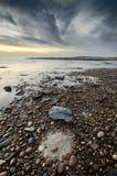 Het mooie hoogtepunt van de strandscène van kiezelstenen in de kustlijn, natuurlijke cirkelvorming in het zand Stock Foto