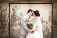 Het mooie huwelijkspaar kussen dichtbij de oude muur stock foto