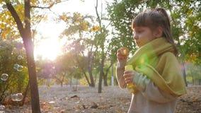 Het mooie jong geitje maken borrelt op achtergrond van zon en bomen in de herfstpark stock videobeelden