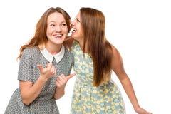 Het mooie jonge meisjes roddelen Stock Afbeeldingen