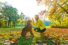Het mooie jonge vrouw spelen met haar Hond in het bos Royalty-vrije Stock Afbeeldingen