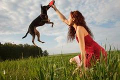 Grappige het springen hond Stock Foto