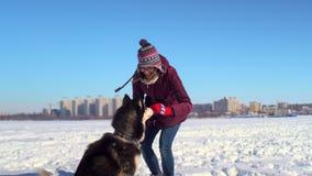 Het mooie jonge vrouw spelen met haar Schor hond op bevroren rivier tegen achtergrond van cityscape stock video
