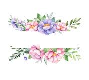 Het mooie kader van de waterverfgrens met pioen, bloem, gebladerte, takken en meer royalty-vrije illustratie