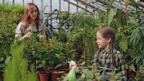 Het mooie kind bestrooit water op potteninstallaties onder begeleiding van haar moeder professionele tuinman Gelukkige kinderjare stock video
