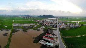 Het mooie kleine dorp in het midden van het groene padieveld stock foto's