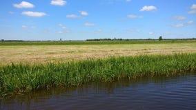 Het mooie landschap in Friesland stock fotografie