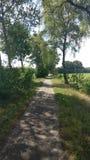 Het mooie landschap in Twente royalty-vrije stock afbeelding