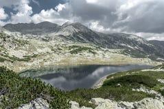 Het mooie landschap van het bergmeer met alpiene vegetatie Royalty-vrije Stock Afbeelding