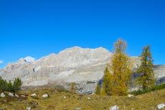 Het mooie landschap van de de bergen gele herfst van Dolomietalpen rotsachtige Stock Fotografie
