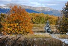 Het mooie landschap van de de herfstberg Stock Foto