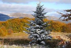 Het mooie landschap van de de herfstberg Stock Afbeelding