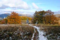 Het mooie landschap van de de herfstberg Stock Afbeeldingen