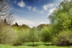 Het mooie landschap van de de lenteaard stock afbeeldingen