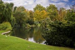 Het mooie Landschap van de Herfst Royalty-vrije Stock Afbeeldingen