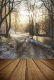 Het mooie landschap van het de Wintersneeuw behandelde platteland van rivierflo Stock Afbeeldingen