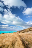 Het mooie Landschap van Nieuw Zeeland Royalty-vrije Stock Fotografie