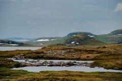 Het Mooie landschap van Noorwegen bij de zomer Stock Foto