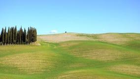 Het mooie landschap van Toscanië met de cipressenbomen stock videobeelden