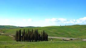 Het mooie landschap van Toscanië met de cipressenbomen die langs de weg, Toscanië, Italië groeien stock footage