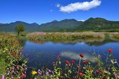 Het mooie meer en de bloemen Stock Foto