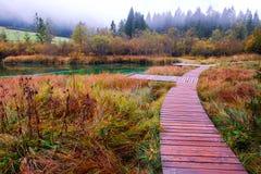 Het mooie meer Zelenci in de herfst kleurt op de achtergrond de Martuljek-berg dichtbij Kranjska Gora in nationale Triglav royalty-vrije stock fotografie