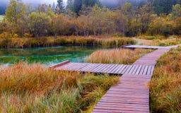 Het mooie meer Zelenci in de herfst kleurt op de achtergrond de Martuljek-berg dichtbij Kranjska Gora in nationale Triglav stock foto