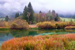 Het mooie meer Zelenci in de herfst kleurt op de achtergrond de Martuljek-berg dichtbij Kranjska Gora in nationale Triglav stock afbeelding