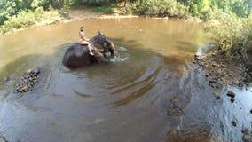 Het mooie meisje dat een olifant berijdt baadt in de DoodhSagar-rivier stock video