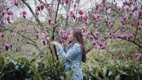 Het mooie meisje in een blauwe laag bevindt zich dichtbij een bloeiende roze boom van de kleurenmagnolia en snuift zijn algemene  stock video