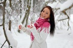 Het mooie meisje glimlachen Vorst, de winter Stock Afbeelding