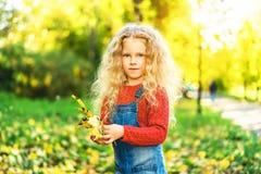 Het mooie meisje heeft pret in het park, de herfsttijd stock foto