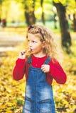 Het mooie meisje heeft pret in het park, de herfsttijd royalty-vrije stock afbeelding