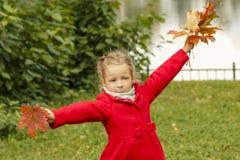 Het mooie meisje in rode laag in het de herfstpark op de achtergrond van gele bladeren, groen gazon danst met esdoornbladeren royalty-vrije stock foto's