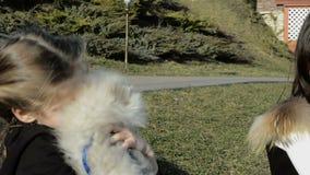 Het mooie meisje spelen met de hond stock videobeelden