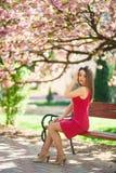 Het mooie meisje stellen aan de fotograaf tegen de achtergrond van bloeiende roze bomen De lente Sakura Stock Foto